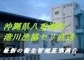 minatokawaseri1.jpg
